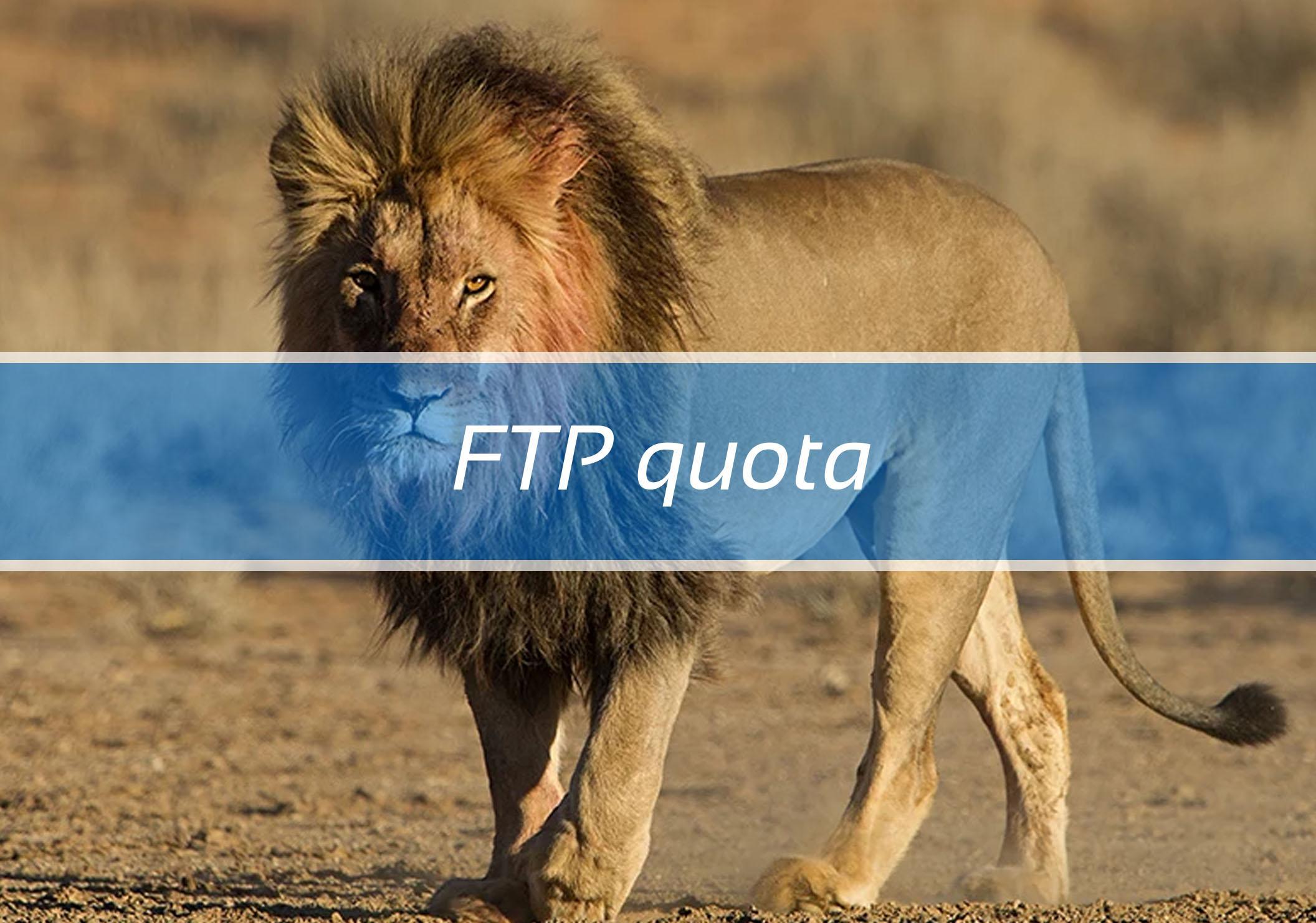 FTP quota